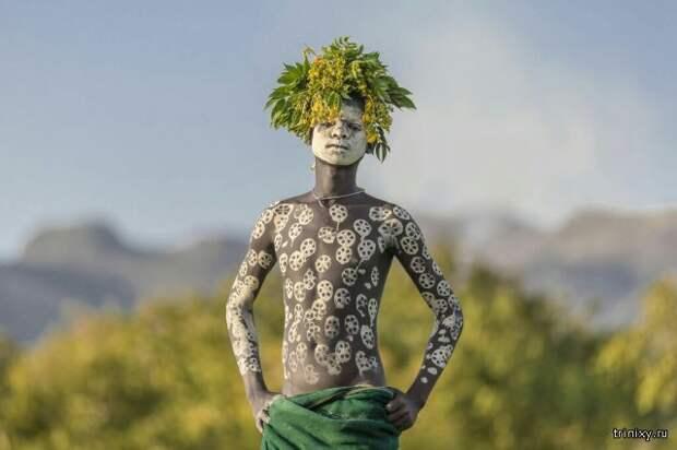 Лучшие фотографии National Geographic за март 2017 года (16 фото)
