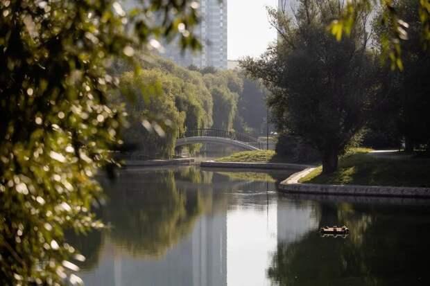От дубовой рощи до бывшего аэропорта: 7 ярких парков САО