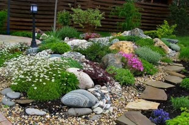 Подбираем растения для альпийской горки.