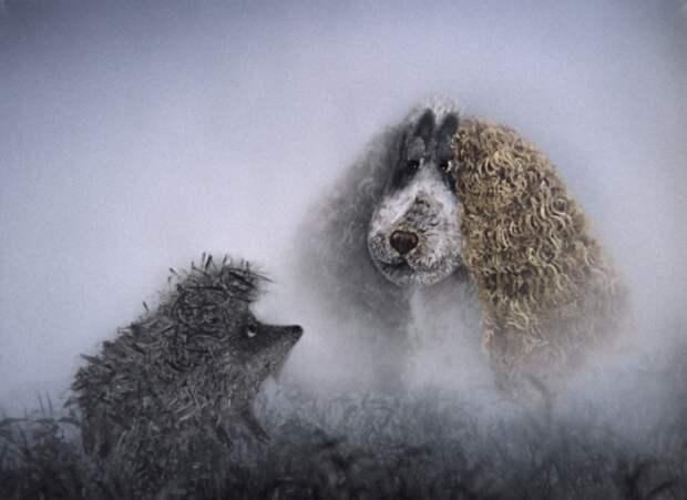 Ежик в тумане./Фото источник: hevc-club.ucoz.net