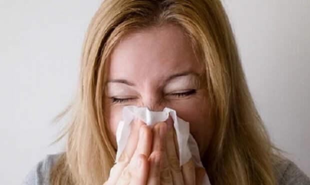 Когда чихать на всё хотел: мифы и правда о чихании