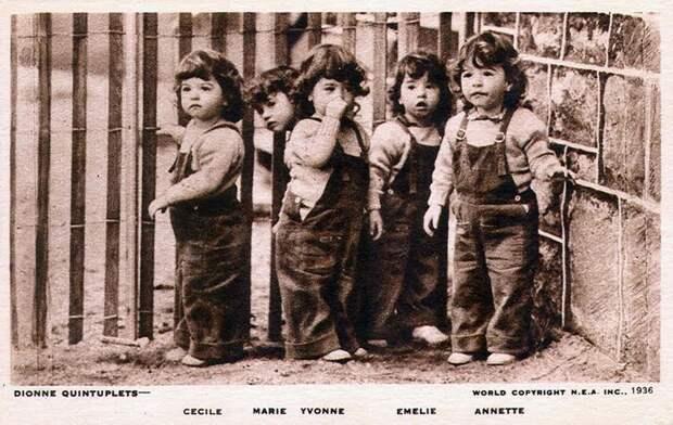 Знаменитые пятерняшки Дион двойня, многодетность, многоплодная беременность, плодовитость, рекорды, тройня