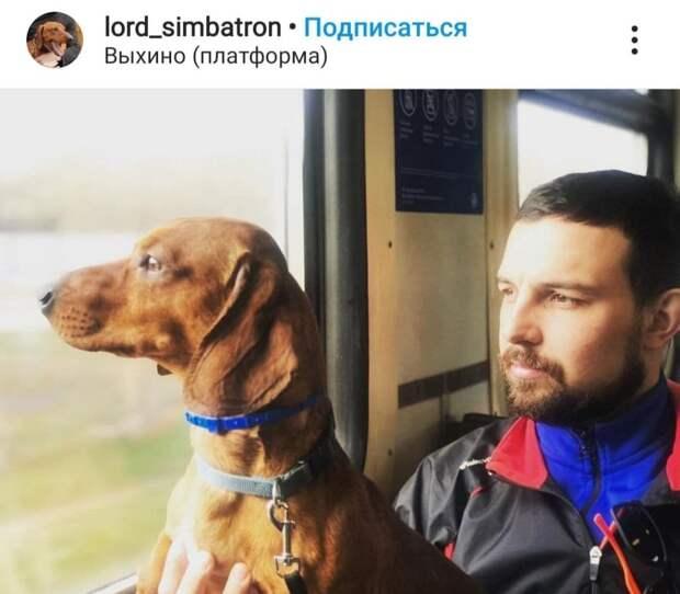 Фото дня: двое в поезде, считая собаку