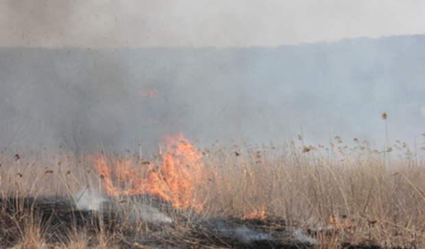 Нарушители противопожарного режима получили штрафы на400 тысяч на Урале