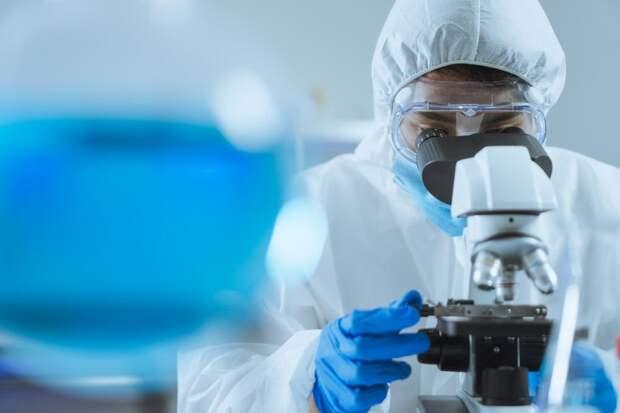 Генетики впервые создали гибридные эмбрионы человека и обезьяны