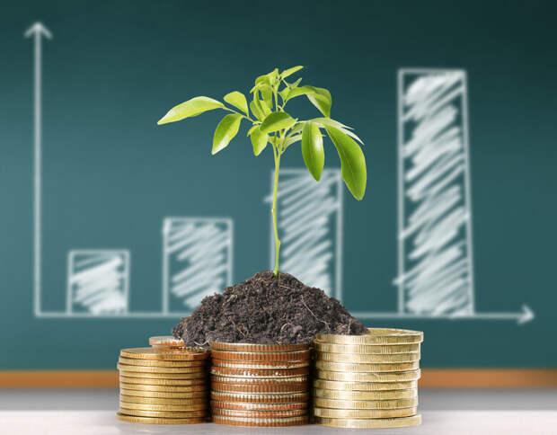 Глава МЭР назвал ключевые направления для совершенствования механизмов поддержки инвестиций