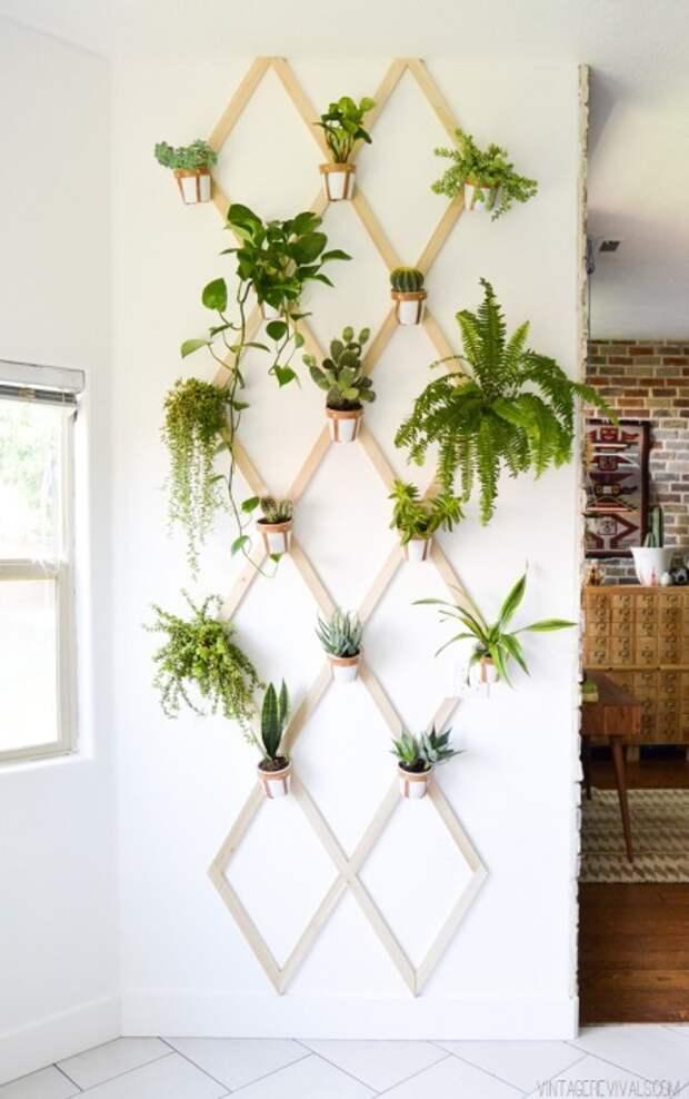 Вертикальное озеленение с помощью цветочных горшков и деревянной решётки.