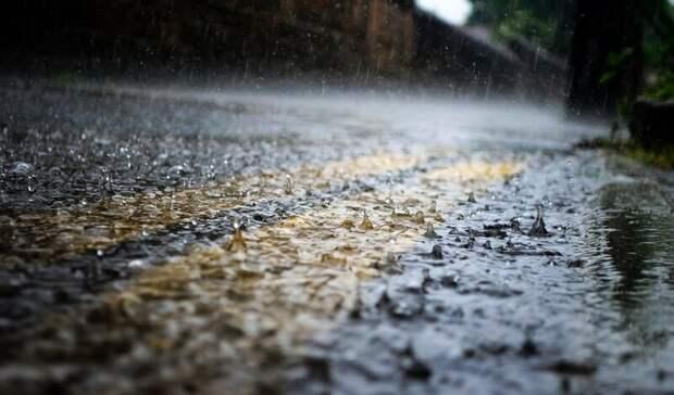 Дождливые итеплые выходных пообещали жителям Ростова-на-Дону