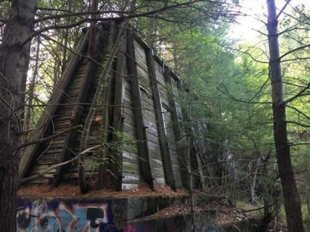 12 странных находок в лесу, которым нашлось объяснение (13 фото)