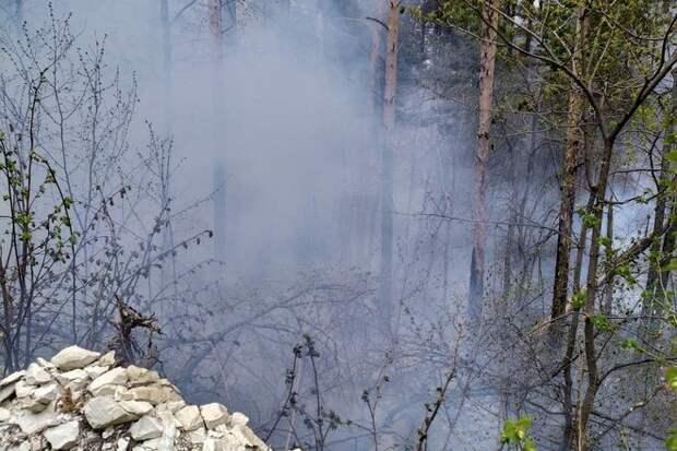 Три гектара леса горят в нацпарке под Саратовом