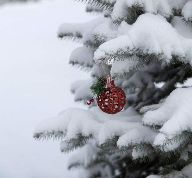 Пятница, 31-е: правительство подготовило новогодний подарок россиянам уже и на год 2022-й