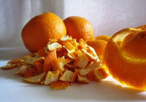 Апельсиновая кожура отлично справляется с отпугиванием мелких вредителей. /Фото: daybook.info