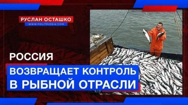 Россия возвращает контроль в рыбной отрасли