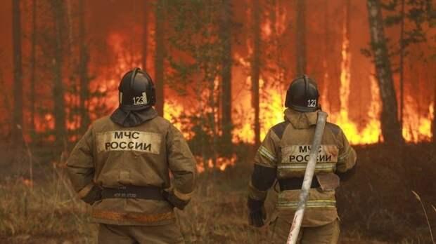 Климатологи предрекли летом природную катастрофу вроссийских регионах
