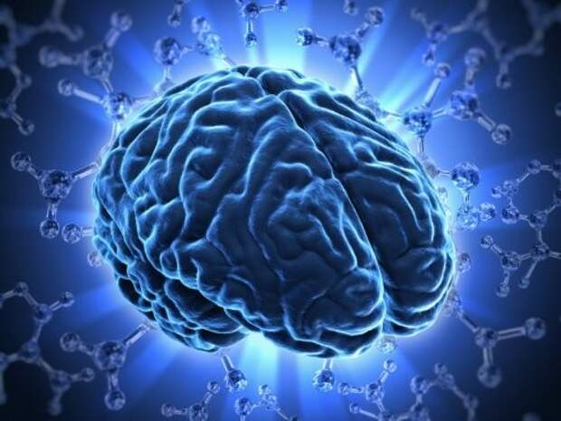14. Наш мозг не чувствует боли тело, человек, шокирующие факты