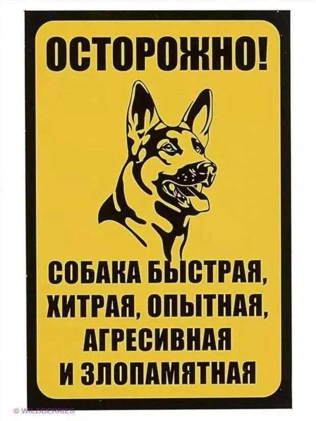 Предупреждающие таблички. Прикольные. Подборкаchert-poberi-tablichki-57390614122020-14 картинка chert-poberi-tablichki-57390614122020-14