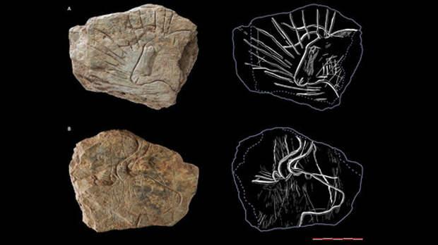 Археологи рассказали об открытии, которое скрывали несколько лет