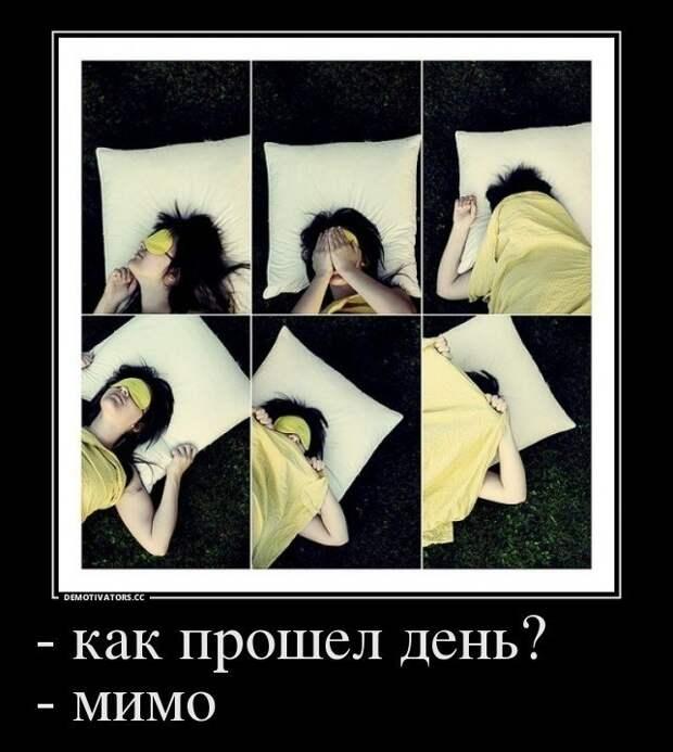 Смешные демотиваторы для поднятия настроения (10 фото)