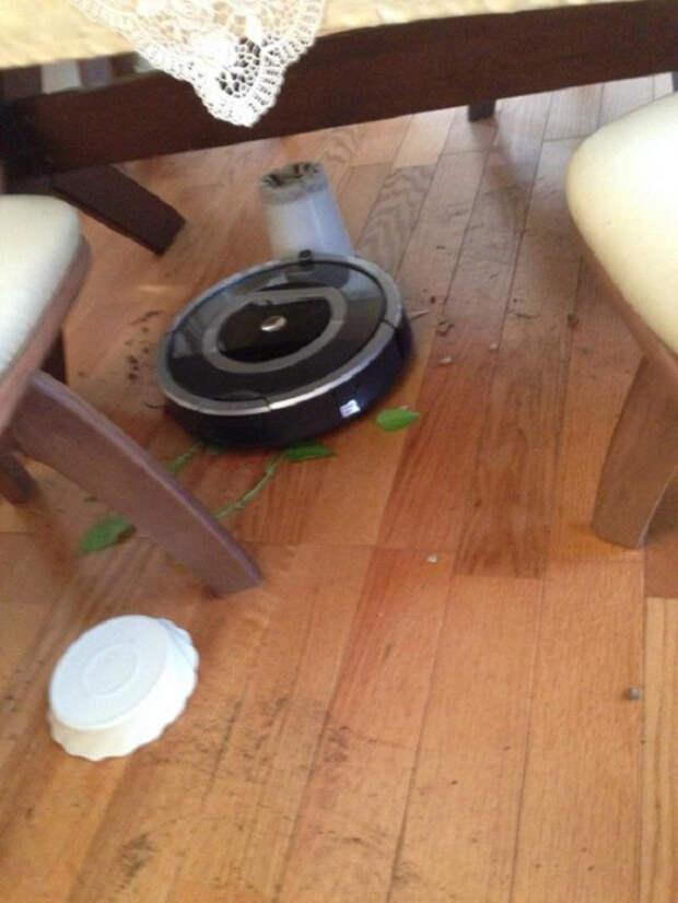 13 причин, почему не стоит покупать робот-пылесос неудачные покупки, робот-пылесос, смешно, техника