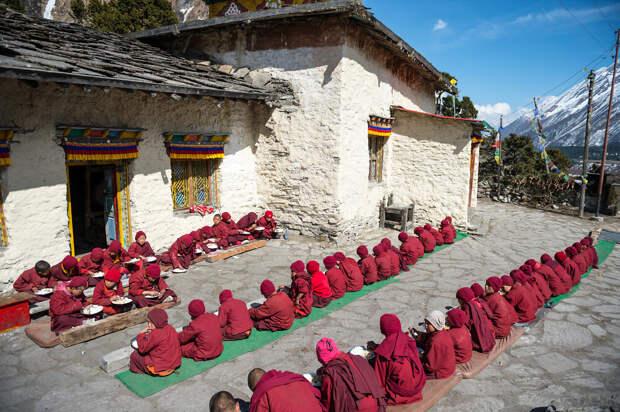 Общепит по буддистски или что едят в Тибете, что бы достичь просветления?