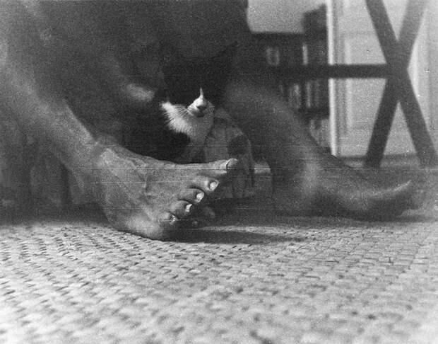 Котенок сидит между ног Эрнеста Хемингуэя на Финка Вихия.