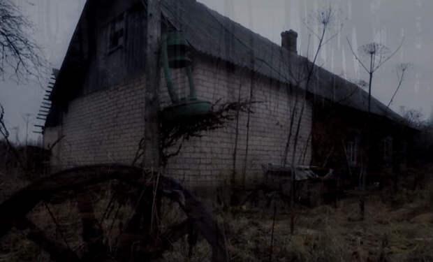 Поисковики вышли к брошенному селу в болоте: люди оставили все вещи