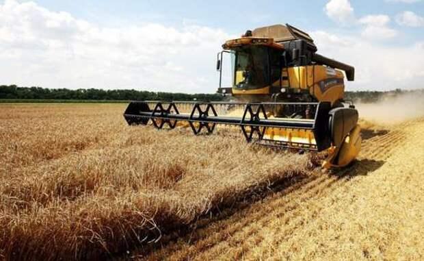 Торговая стена для России: Турция установила 130% пошлину на ввоз пшеницы   Продолжение проекта «Русская Весна»