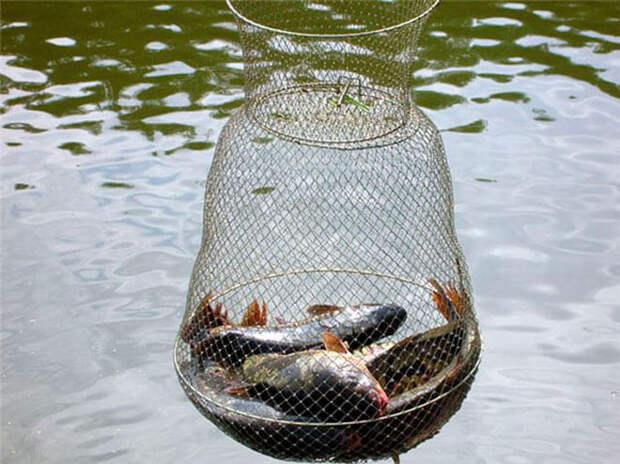 рыбацкий садок