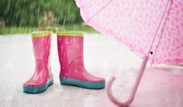 ВРостове синоптики назвали дату прекращения дождей