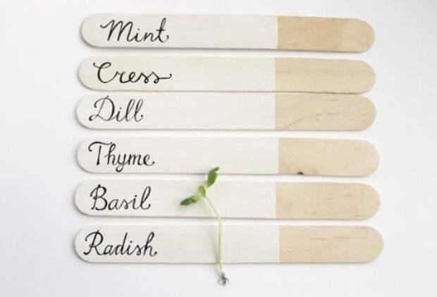 Палочки от мороженого с названиями растений
