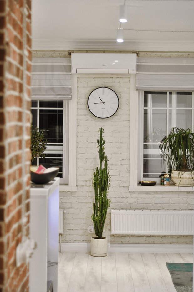 Чистый яд: Комнатные растения, которым не место в доме