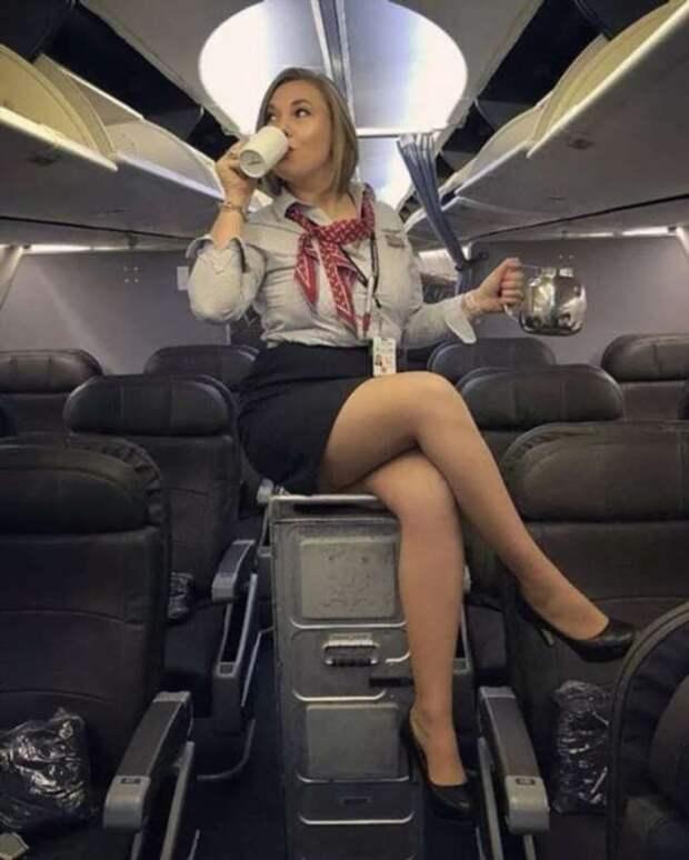 Ножки стюардесс. Подборка chert-poberi-styuardessy-chert-poberi-styuardessy-15320614122020-1 картинка chert-poberi-styuardessy-15320614122020-1