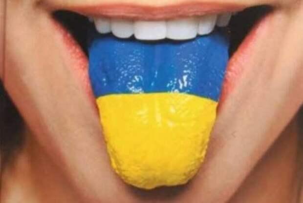 В Раде Украины придумали наказание занадругательство над «мовой»