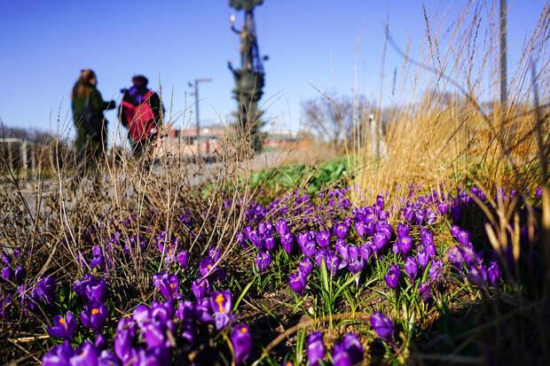 Весна придёт в Москву в последнюю неделю марта