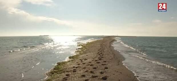 Уникальный ландшафтный парк в Крыму уходит под воду, удастся ли его спасти?