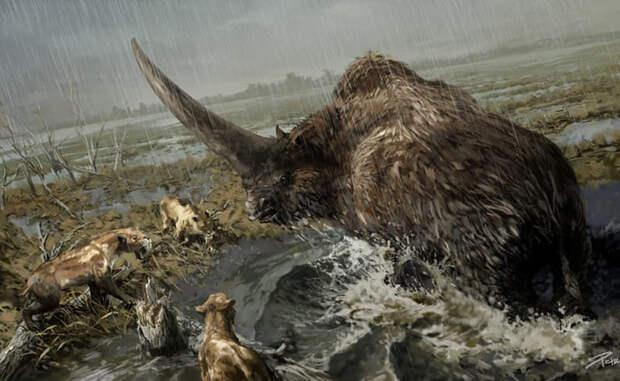 Самые страшные звери далекого прошлого