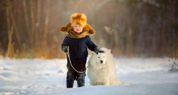Блог Павла Аксенова. Анекдоты от Пафнутия. Фото JuliaSha - Depositphotos