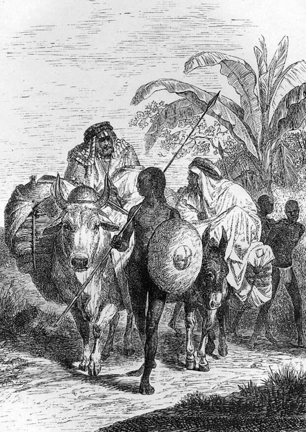 Арабские работорговцы и группа захваченных ими рабов (Судан, 1870 - 1871 годы)