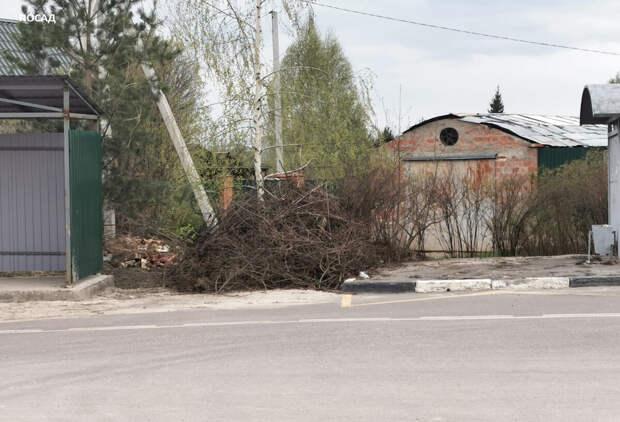 Каждый клочок муниципальной земли завален спиленными ветками.