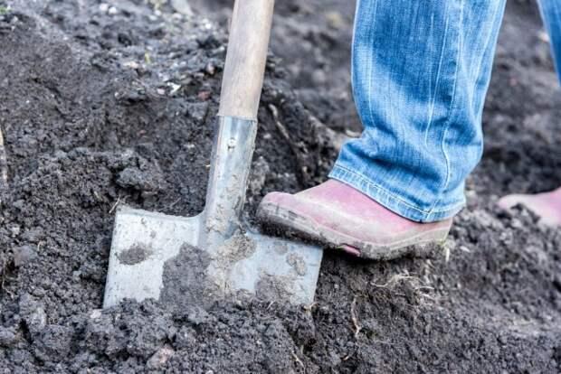 копать грядку
