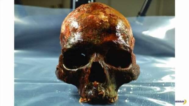 Это Людвиг, ему 8000 лет