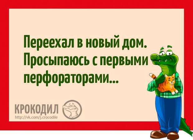 https://pp.vk.me/c626217/v626217611/228eb/OYYjBAN_x_M.jpg