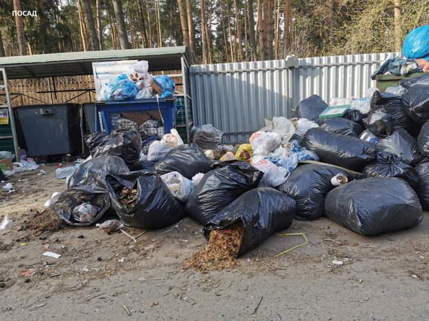 Мешками с садовым мусором завалено всё. Куда это денется? Раньше садоводы сами утилизировали. А теперь?