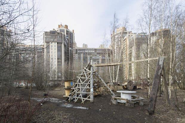Как петербуржцы благоустроили заброшенный лес у парка 300-летия ипостроили там веревочный городок, горки и места для отдыха