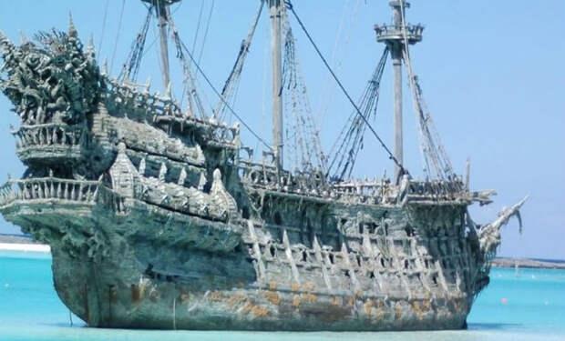 Пираты завезли на остров свиней, а потом уплыли. Через несколько веков люди вернулись и остров изменился