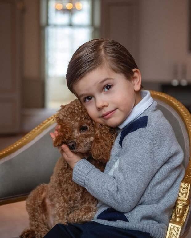 Маленький принц: шведский дворец опубликовал новые портреты ко дню рождения кронпринца Оскара