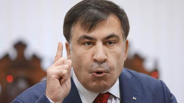 Саакашвили заявил о желании вернуться на свой огород в Грузии