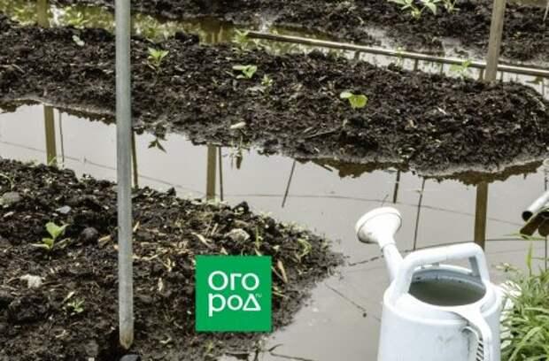 Затопило участок весной – что делать?
