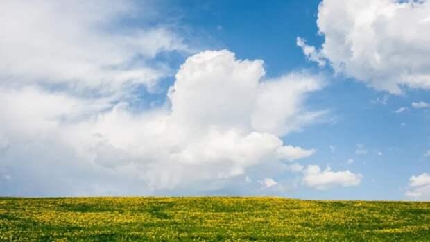 Тепло и ветрено. О погоде в Алтайском крае 18 апреля