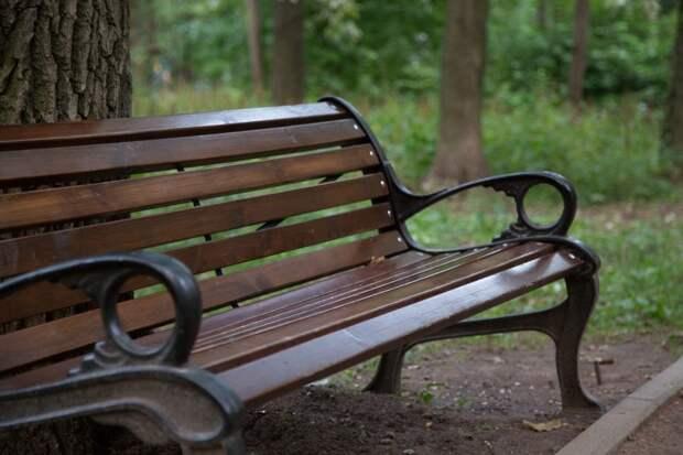 У подъезда дома на улице Алабяна установят новые скамейки